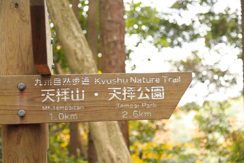 筑紫野市の概要・アクセス(乗り入れ路線・道路)